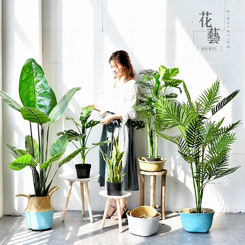 简约北欧仿真落地大盆景样板间室内大型绿植盆栽店铺客厅橱窗展示