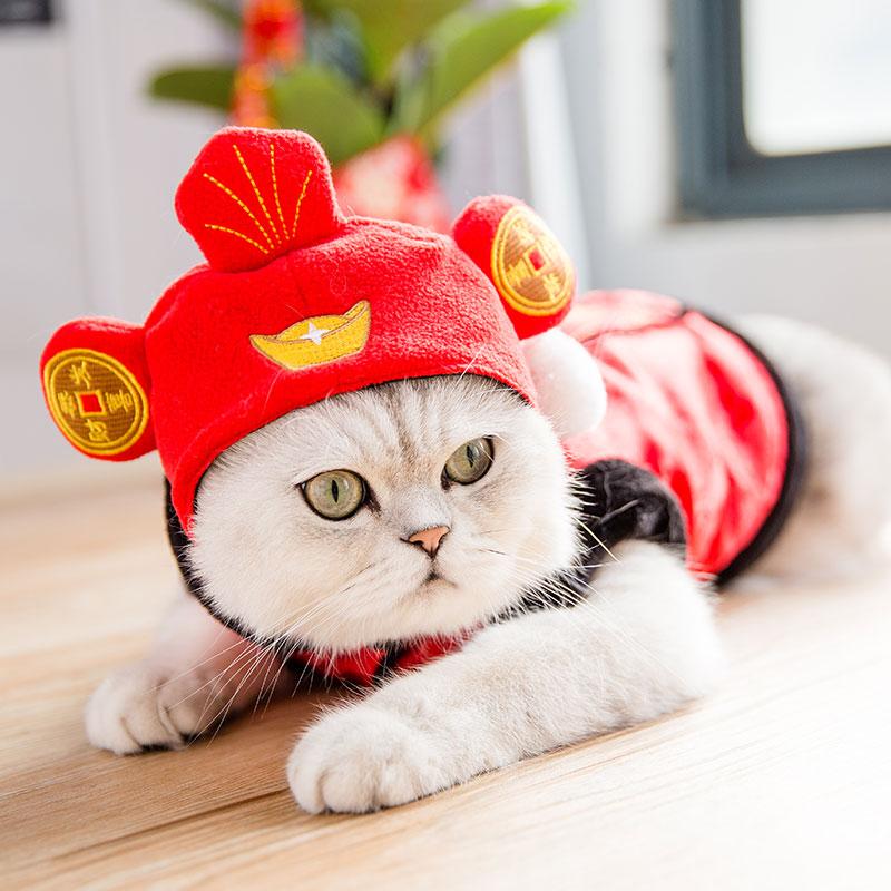 招财必备猫咪头套帽子可爱狗狗英短加菲猫装扮头饰假发宠物饰品