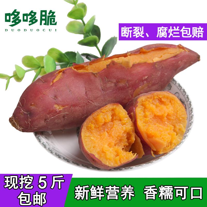 现挖沙地红薯5斤 新鲜蔬菜番薯香薯蜜署板栗味山芋非紫薯黄心地瓜