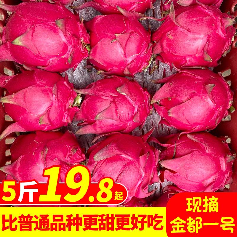 金都一号红心火龙果 水果新鲜当季5斤广西树上熟大果京都红肉整箱