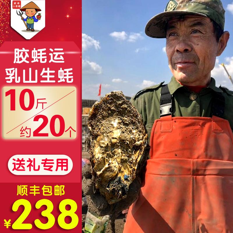 特大生蚝鲜活新鲜乳山牡蛎带壳海蛎子10斤装顺丰威海现捞海产品