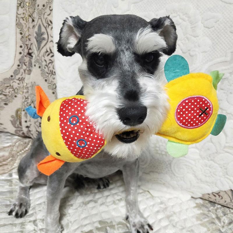 狗狗毛绒玩具发声磨牙耐咬训练泰迪比熊幼犬咬胶狗狗猫咪宠物用品