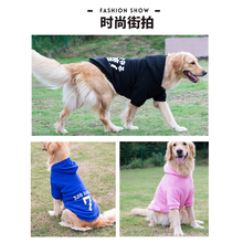 Golden hair clothes dog autumn Labrador winter clothing medium-sized large dog Satsuma Husky pet big dog autumn and winter