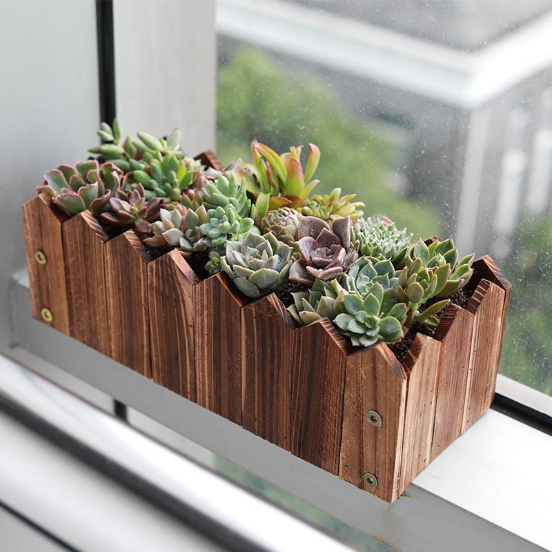 防腐木多肉花箱加厚实木花槽阳台室外室内户外种植木质花盆长方形