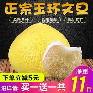 Authentic Yuhuan Wendan grapefruit Fresh Chumen Baixin Wendan honey pomelo Zhejiang Taizhou specialty products