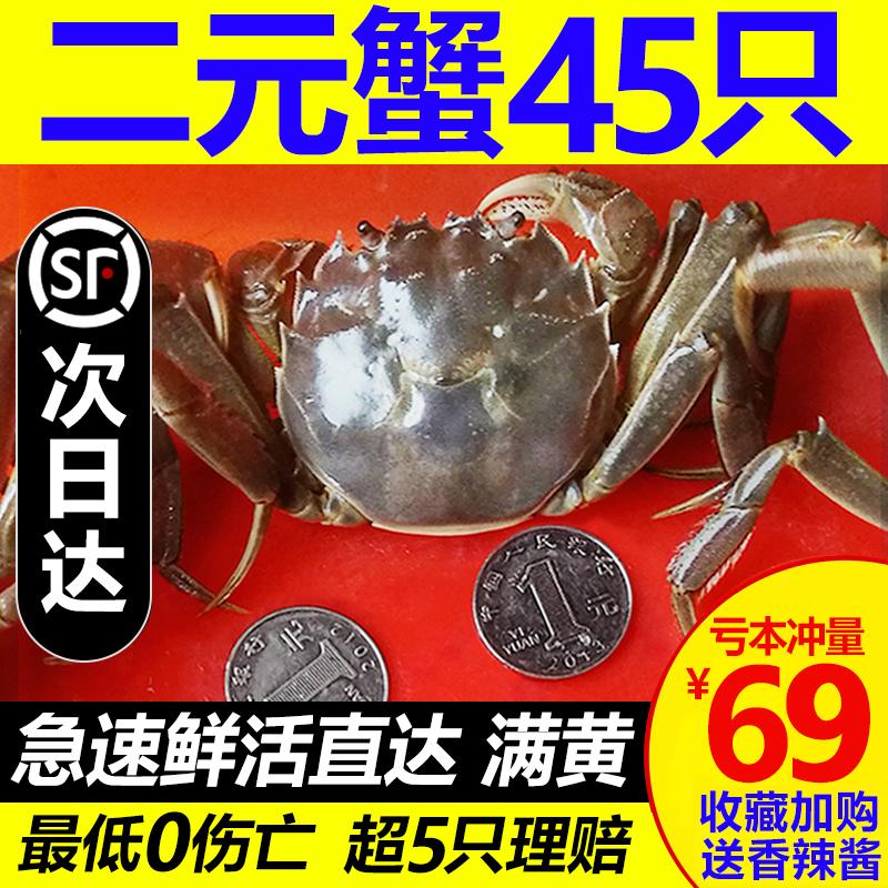 六月黄小螃蟹鲜活二元蟹公母一元小闸蟹稻田蟹毛蟹香辣蟹河蟹包邮