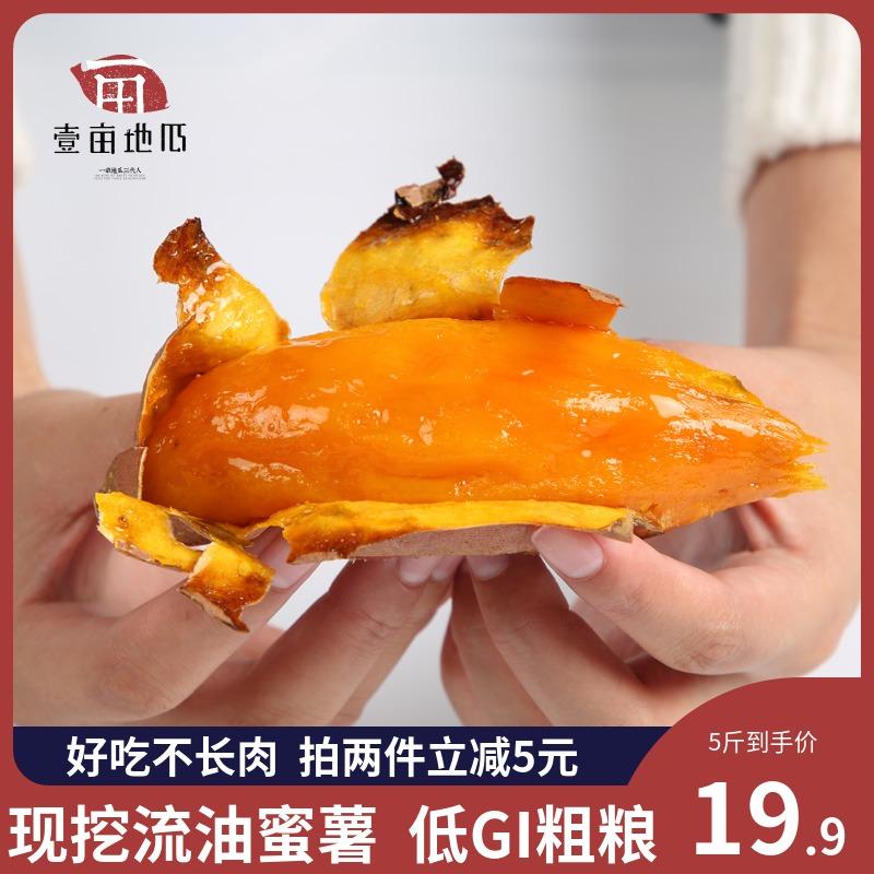 瓜烤红薯紫薯烟薯25红薯5斤