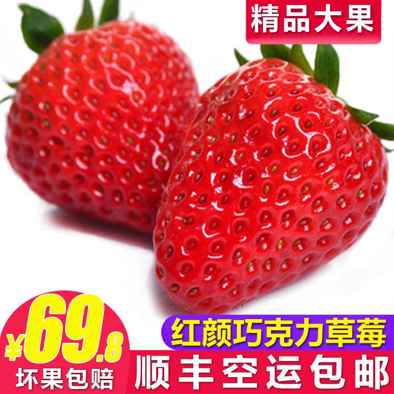 草莓新鲜包邮3斤巧克力奶油双流冬草莓孕妇水果当季非丹东99草莓