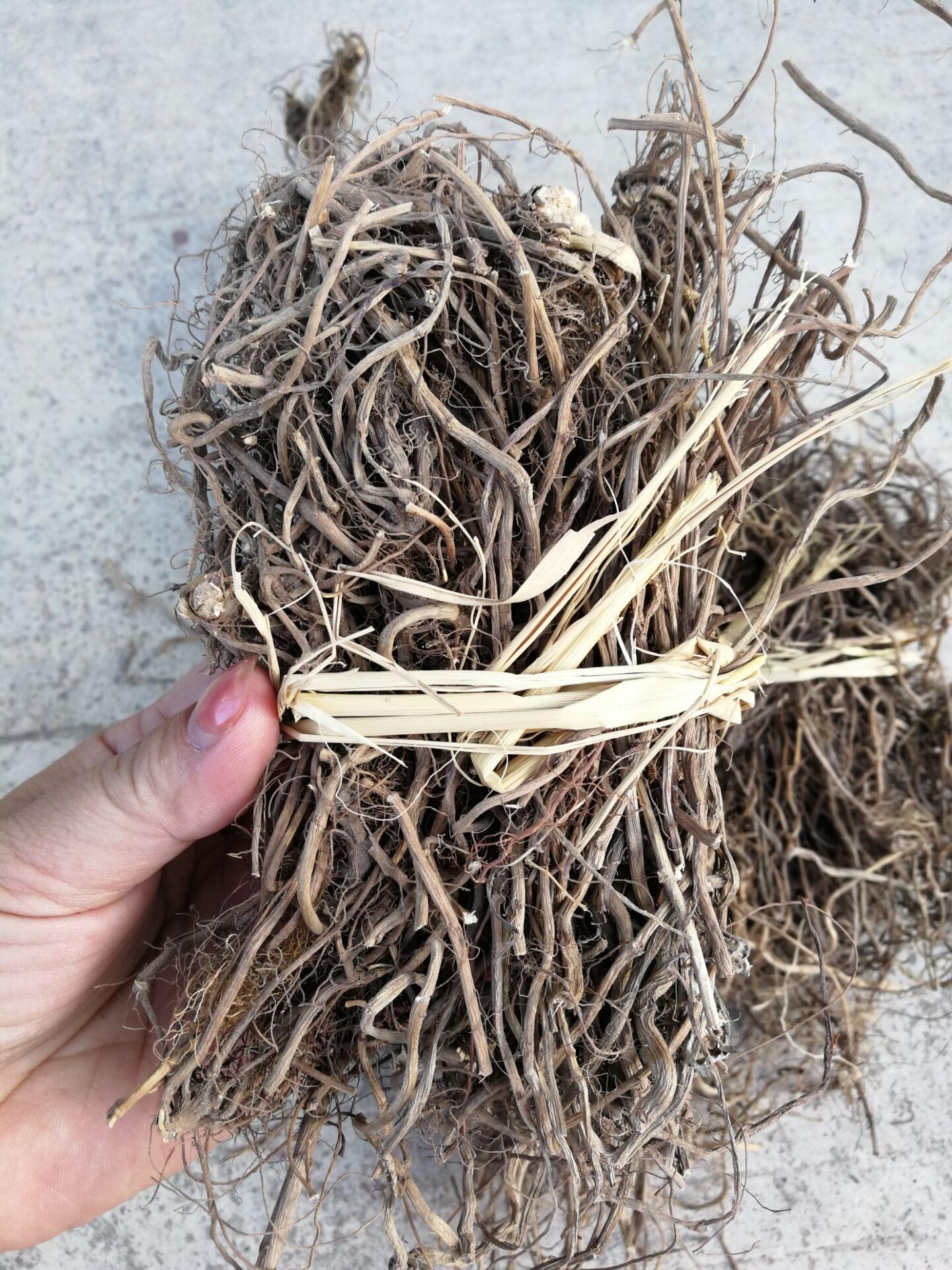艾根蕉岭艾根梅州特产五月野生老艾根滋补煲汤 月子草1斤全国包邮