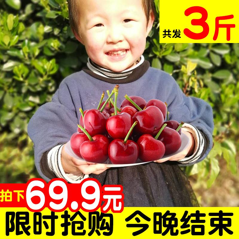 天水大樱桃3斤新鲜水果国产美早殷桃非山东烟台5车厘子顺丰包邮10