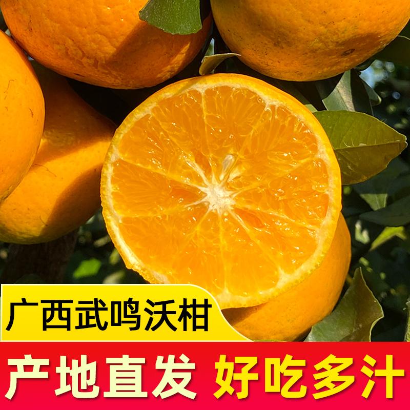 广西武鸣沃柑  当季产地直采直发 新鲜应季孕妇水果沃柑 5斤装