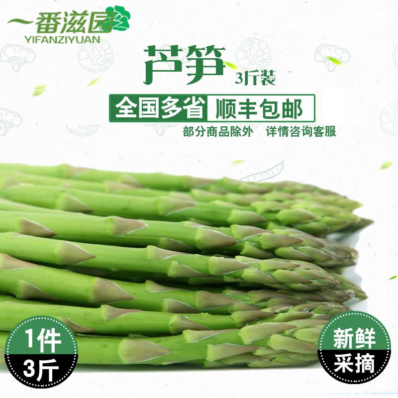 春季新鲜芦笋龙须菜新鲜蔬菜 绿芦笋农家自产青笋去白根春笋3斤装