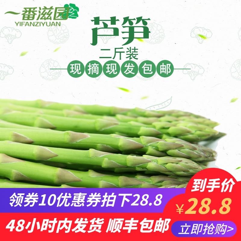 春季新鲜芦笋龙须菜新鲜蔬菜 绿芦笋农家自产青笋春笋2斤装包邮