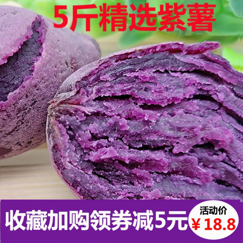 紫薯5斤包邮 农家自种番薯现挖沙地地瓜新鲜紫芋头红薯香薯