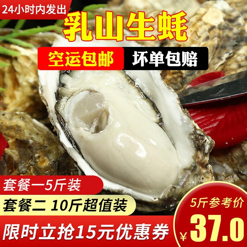 乳山生蚝鲜活新鲜牡蛎即食海蛎子海鲜水产鲜活一箱5斤10斤特大