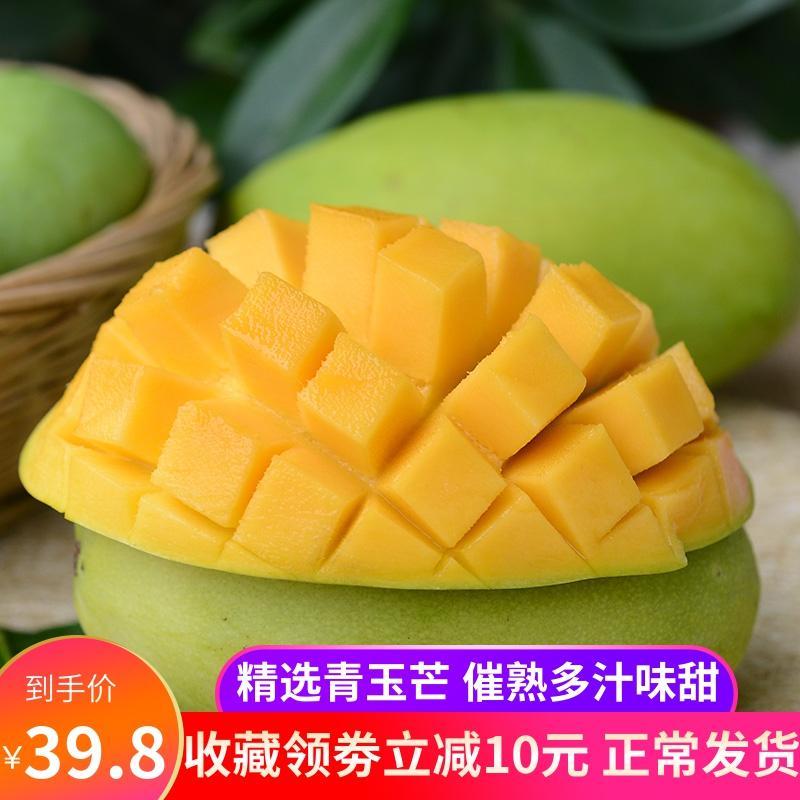 云南新鲜芒果当季芒果净果9斤新鲜水果 越青芒果玉芒香南芒果包邮