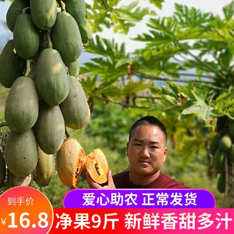 云南红心木瓜9斤新鲜水果冰糖心牛奶青木瓜应季孕妇吃整箱包邮10