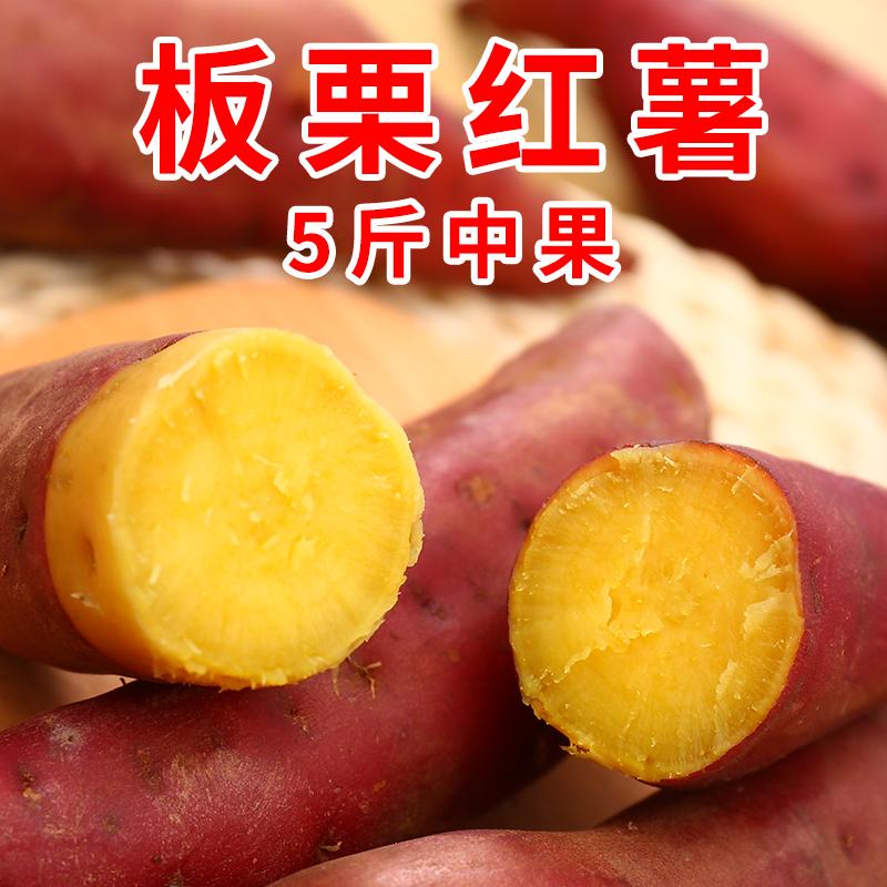 现挖板栗红薯新鲜5斤番薯农家沙地黄心烤地瓜蔬菜非天目山小香薯