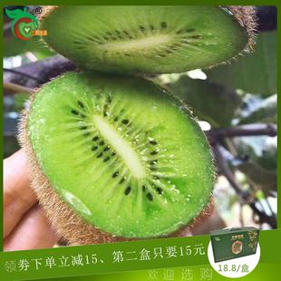 陕西周至绿心新鲜当季 12颗猕猴桃