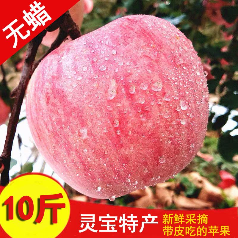【脆甜多汁】新鲜灵宝红富士苹果苹果当季水果无蜡新货带箱10斤