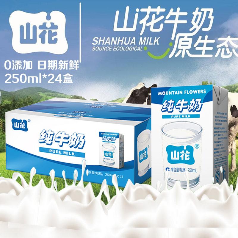 山花纯牛奶儿童学生补钙早餐纯奶整箱250ml*24盒鲜奶高原生态牛奶
