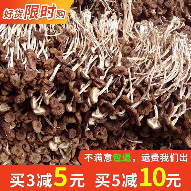 农家自产江西广昌茶树菇干货100g包邮特产半野生新鲜茶薪菇不开伞