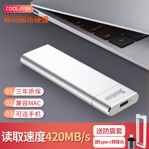 Mobile solid state drive 512g mobile hard drive solid-state Type-C mobile phone Apple MAC external ssd mini metal