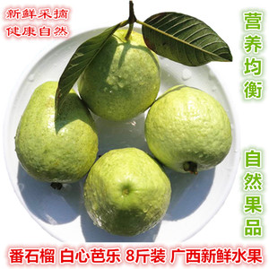 Guava 8kg pack guava fruit Guangxi fresh fruit treasure White heart guava seasonal fresh fruit