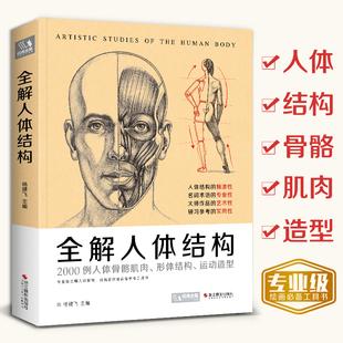 经典全集2020新书 全解人体结构艺术用解剖学工具书籍素描美术绘画入门教程理解骨骼肌肉运动造型形体手绘技法笔记图集教材 杨建飞