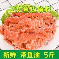 招代理5斤新鲜三文鱼肉边角料碎肉天然狗粮猫粮带鱼油三文鱼碎肉