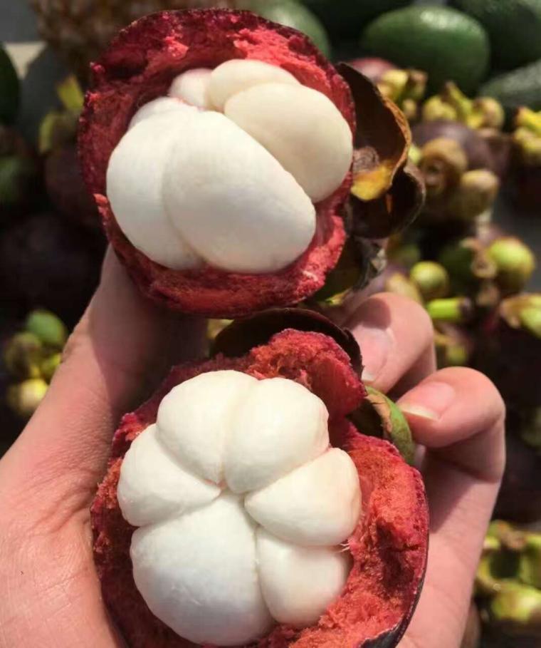 泰国新鲜山竹 进口油麻竹 热带新鲜时令水果山竹中通 包邮5斤装