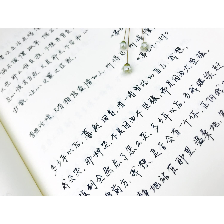 手写体情书行书字帖成人学生钢笔速成字帖硬笔小清新练字帖情书体