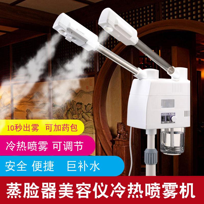 泰东冷热喷雾机双喷蒸脸器美容仪美容院补水仪热喷家用脸部水疗仪