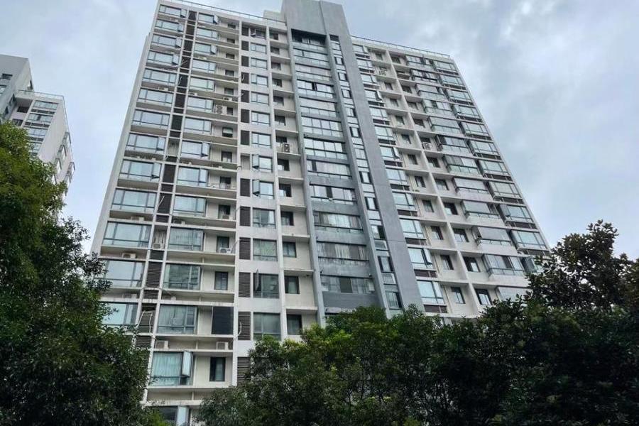 上海市普陀区曹杨路455弄3号1201室