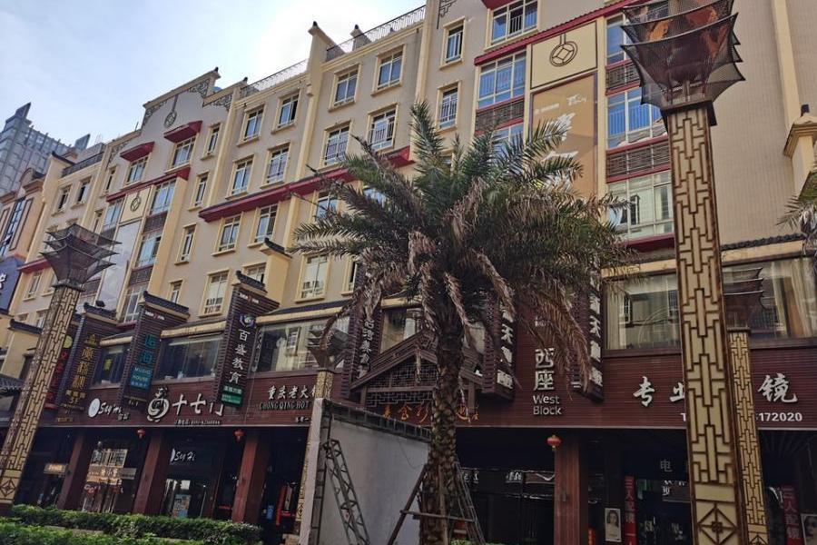 平潭县潭城镇海坛名街(二期)龙山花园21幢一层(01、02、03、05)的房产