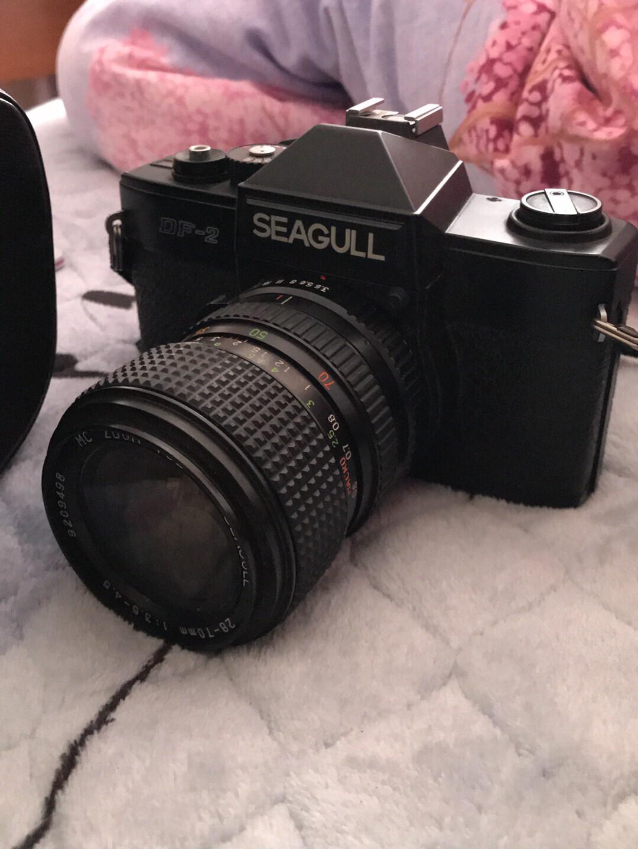 海鸥df2单反  有年头的一个相机 已经不合时宜 但功能正常