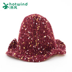 Hot new Korean version of curl casual hats women's wool hats ear knit hat flashes women P006W5410