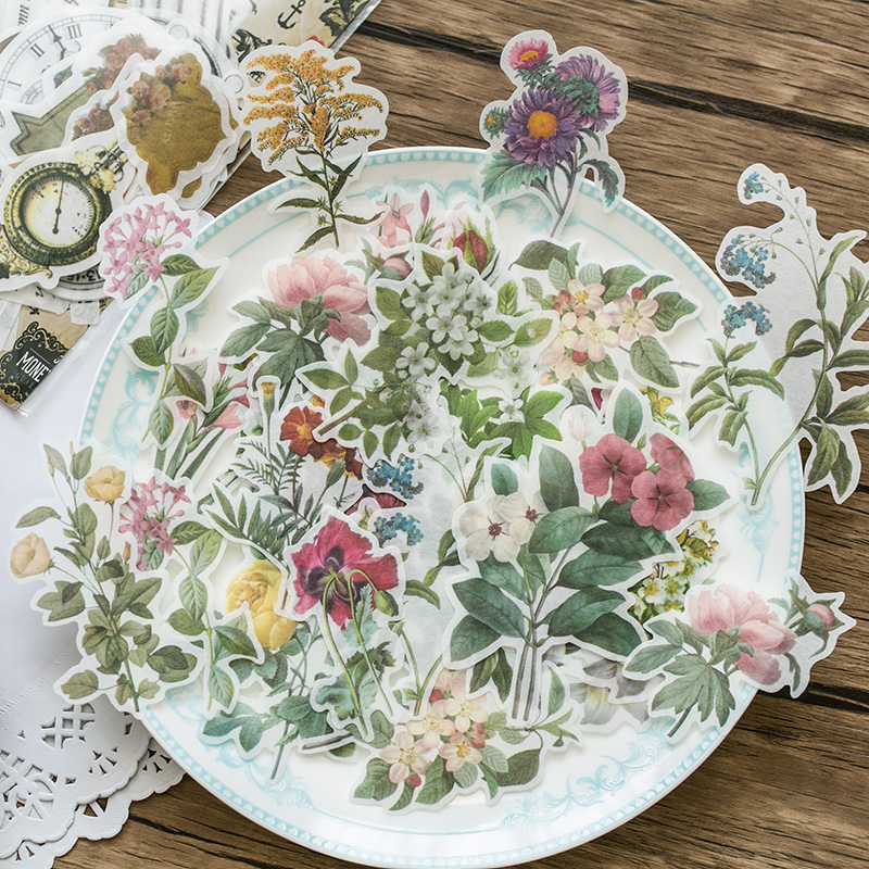 靠近我温暖你 语闲 植物图鉴花卉素材包手帐大尺寸复古和纸贴纸包
