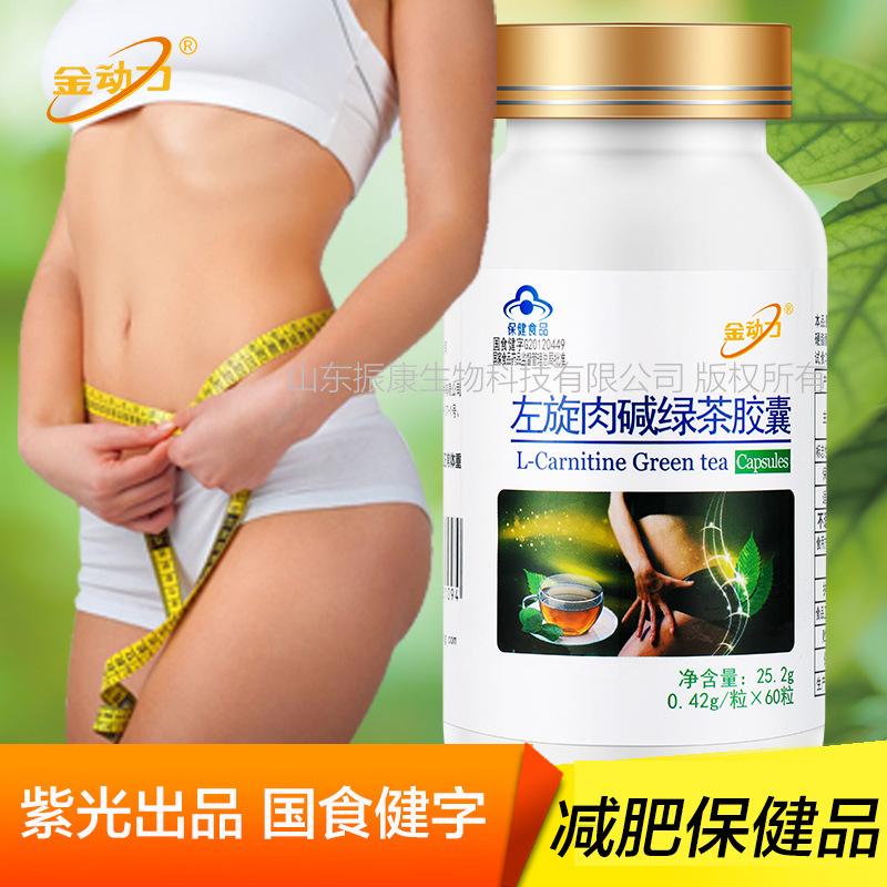厂家 金动力牌绿茶肉碱胶囊 左旋肉碱 茶多酚 減肥产品保健品