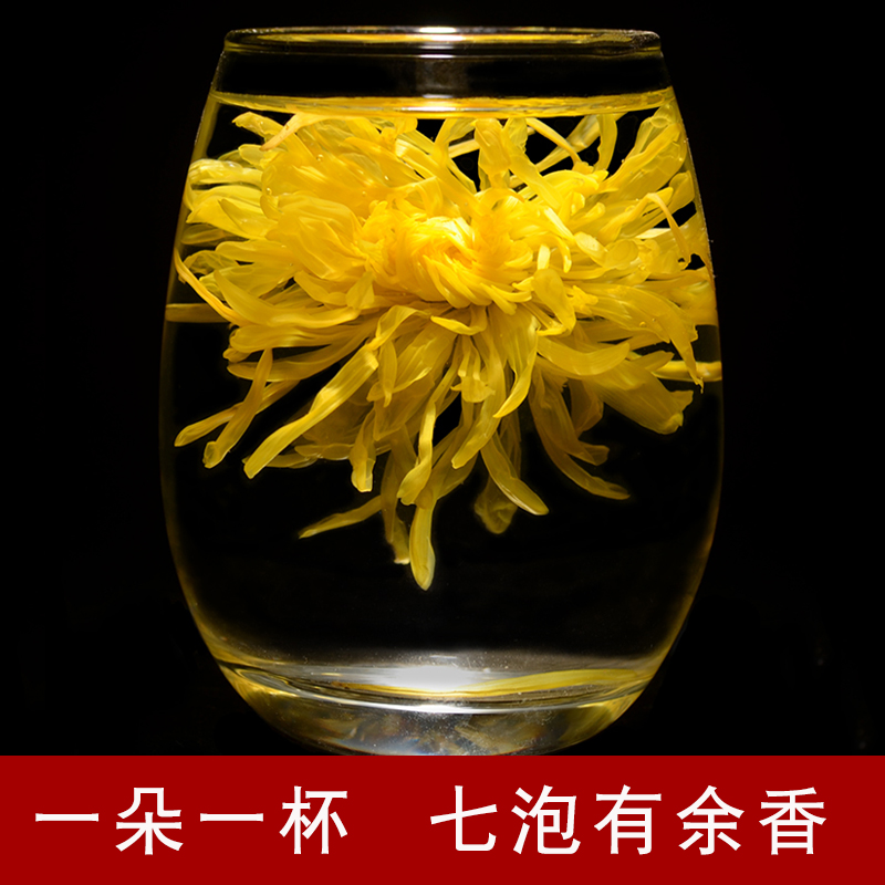 黄金菊花茶清热去火金丝皇菊一朵一杯大黄菊特级花茶礼盒装大菊花