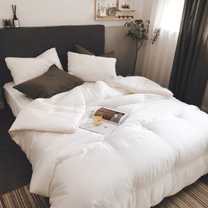 Super soft small fragrance high-end quilt winter quilt core Tencel white small fresh double 8 kg thick warm winter