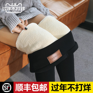 Ultra-thick extra-thick northeast lambskin leggings women's autumn and winter one pants plus velvet thick high-waist outer wear warm cotton pants