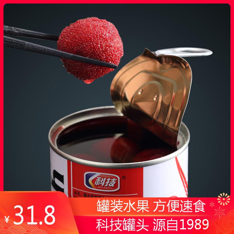 科技牌罐头425克5罐杨梅罐头糖水黑梅甜新鲜水果罐头特产无防腐剂