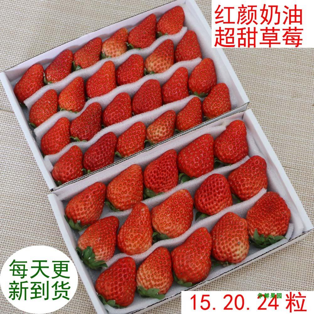 草莓新鲜甜草莓红颜奶油水果牛奶草莓鲜果1盒广东满4盒包邮顺丰.