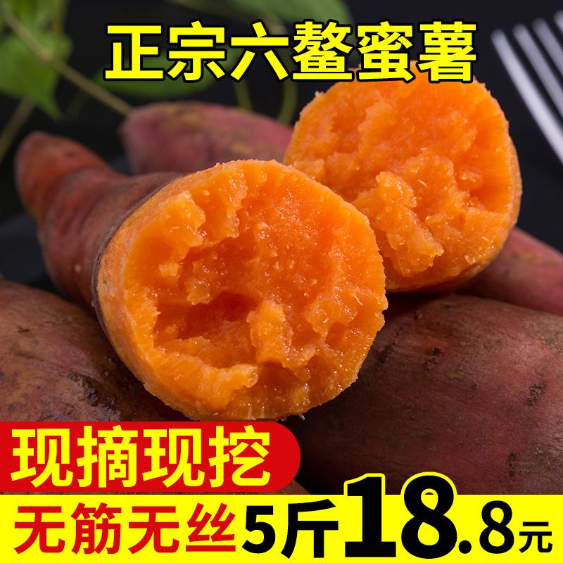 薯家上品正宗六鳌沙地红薯糖心红蜜薯新鲜现挖地瓜甜番薯5斤小果