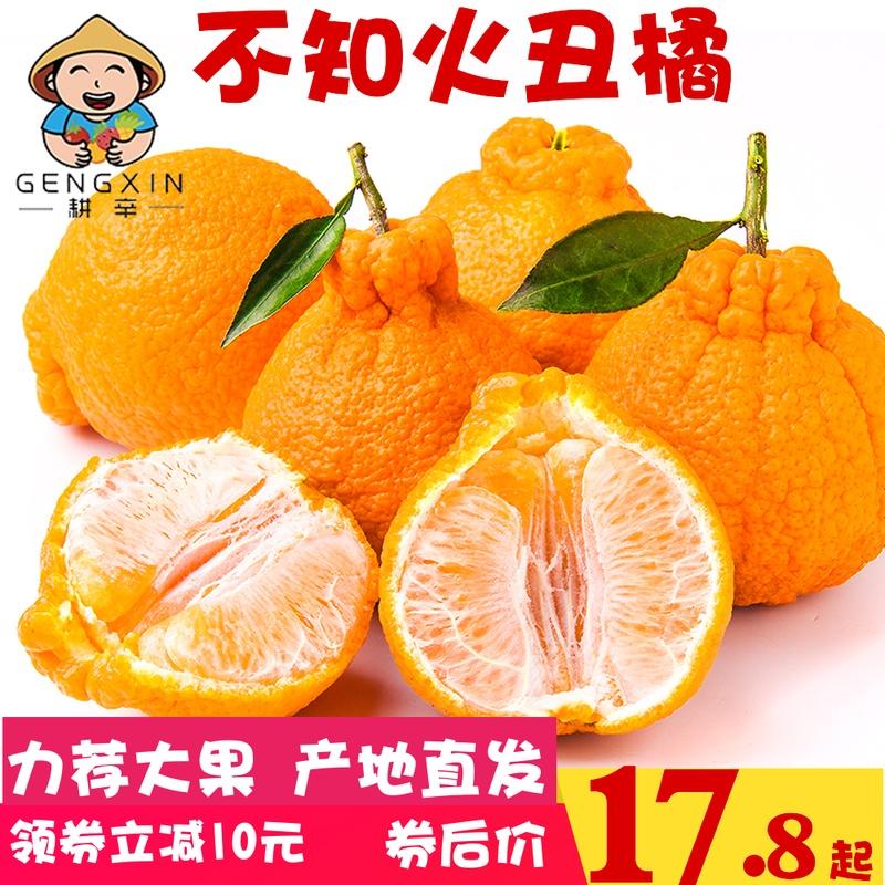 四川不知火丑橘新鲜当季水果整箱橘子蜜桔丑八怪柑橘桔子新鲜包邮