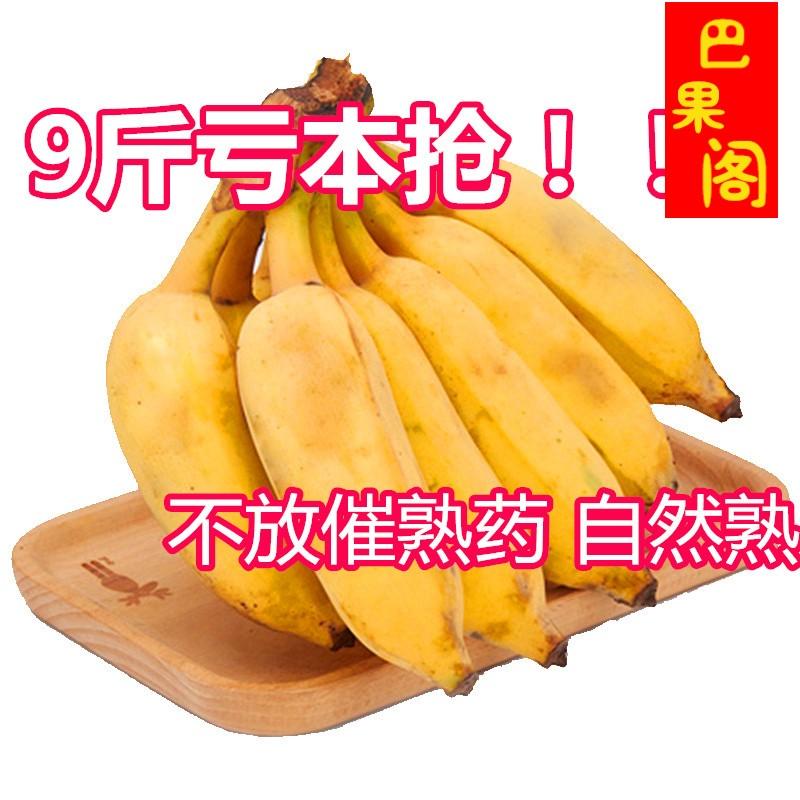 云南芭蕉新鲜水果带箱10斤包邮香蕉自然熟软糯香甜米香蕉