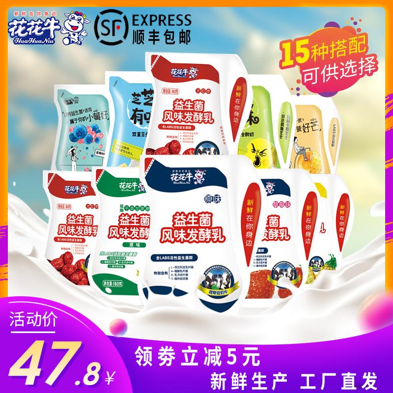 花花牛180g12袋装整箱网红酸奶益生菌风味发酵乳低温早餐鲜牛奶饮