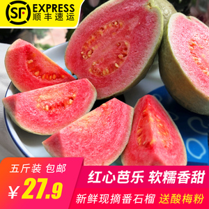 Zhangzhou Red Heart Bella Fruit Fresh Guava Sweet Crispy Soft Waxy Fruit Fresh 5 kg Pregnant Woman Fruit Sweet