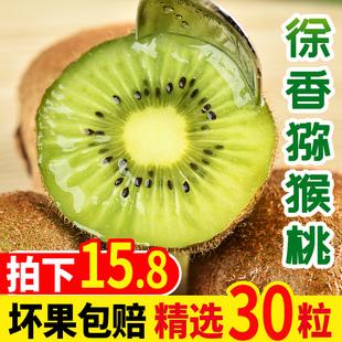 陕西徐香新鲜当季包邮带箱5猕猴桃